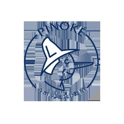 Pinoke.png